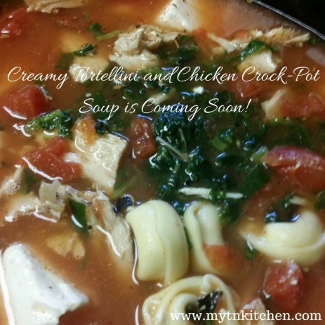 Creamy Tortellini and Chicken Crock-Pot Soup is Coming Soon!
